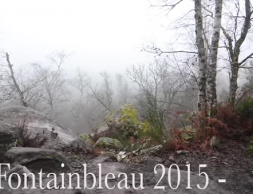 Cailean Harker's Fontainebleau hard Blocs video sees the light of day